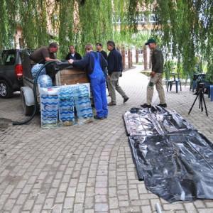 Beluga Stör: Ankunft im NaturaGart Park