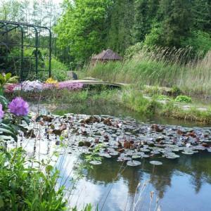 Ein natürlicher Gartenteich ohne Technikeinsatz