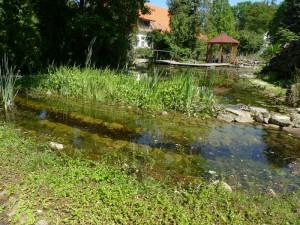 Ein Filterteich kann auch an einem Naturteich angelegt werden. Zweck: Sedimentbeseitigung.