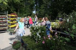 In der Gärtnerei kann man sich beraten lassen und unter einer Vielzahl an Pflanzen wählen