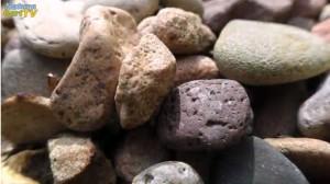 Steine imTeich scheinen zunächst wie eine elegante Lösung, aber das Problem wird dadurch nur aufgeschoben.