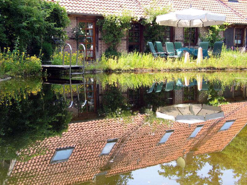 Fischteich mit naturagart teiche planen bauen und pflegen for Gartenteichpflege algen