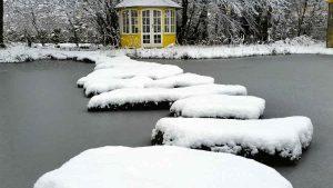Was passiert in einem zugefrorenen Teich mit Fischen? NaturaGart studiert Veränderungen über lange Zeitabläufe.