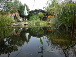 Die Größen der Fischteich-Sets basieren auf langjährigen Erfahrungswerten.