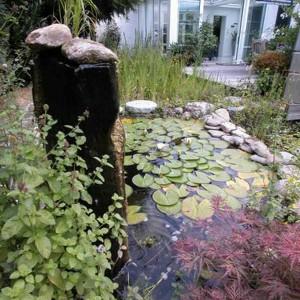 produkte schwimmteich teichfolie teichfilter oder gartenpflanzen mit naturagart teiche. Black Bedroom Furniture Sets. Home Design Ideas