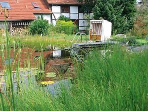 Aussicht auf einen natürlichen Schwimmteich mit Steg