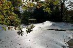 Das Teichnetz kann auch über sehr große Teiche gespannt werden.