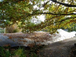 Auch große Mengen Laub machen der NaturaGart-Laubabdeckung nichts aus.