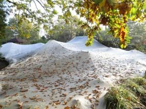 Die Laubabdeckung hält einen großen Eintrag an Nährstoffen vom Teich fern.