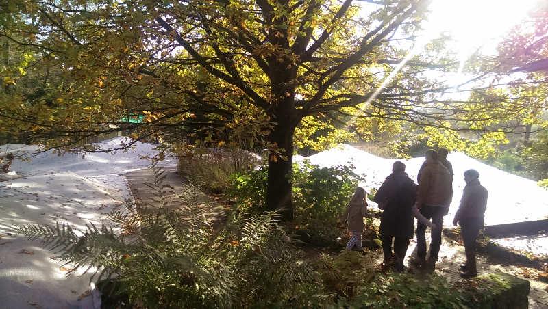 Im Eingangsbereich des Parks liegen mehrere sehr natürlich angelegte Teiche.