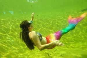 Im neuen Becken für Schnuppertaucher waren die Meerjungfrauen zu bewundern