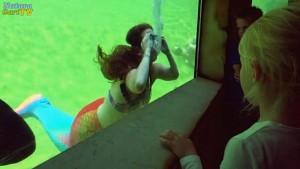 Durch die riesigen Teichfenster konnten Zuschauer das Geschehen verfolgen
