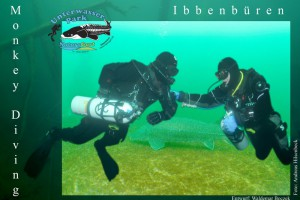 """Sidemount-Tauchen oder """" Monkeydiving"""" im NaturaGart – Unterwasserpark Ibbenbüren"""