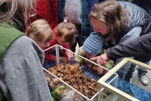 Naturkontakt für Kinder: der Teichbauer NaturaGart bietet für Kinder viele Naturattraktionen