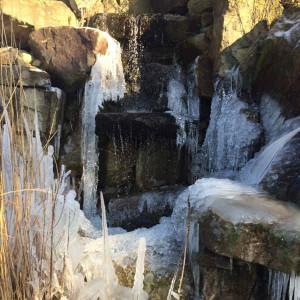 Dieser Anblick ist selten: der große Wasserfall des Parks im Winterkleid.