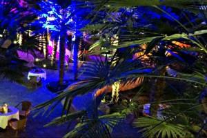 Stimmungsvolle Abendbeleuchtung gibt der Palmenhalle ein einzigartiges Ambiente
