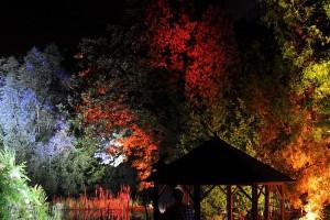 Gartenbeleuchtung im NaturaGart Park
