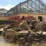 Mittelpunkt des NaturaGart Teichtreffs: Ausstellungsort und Anschauungsbeispiele