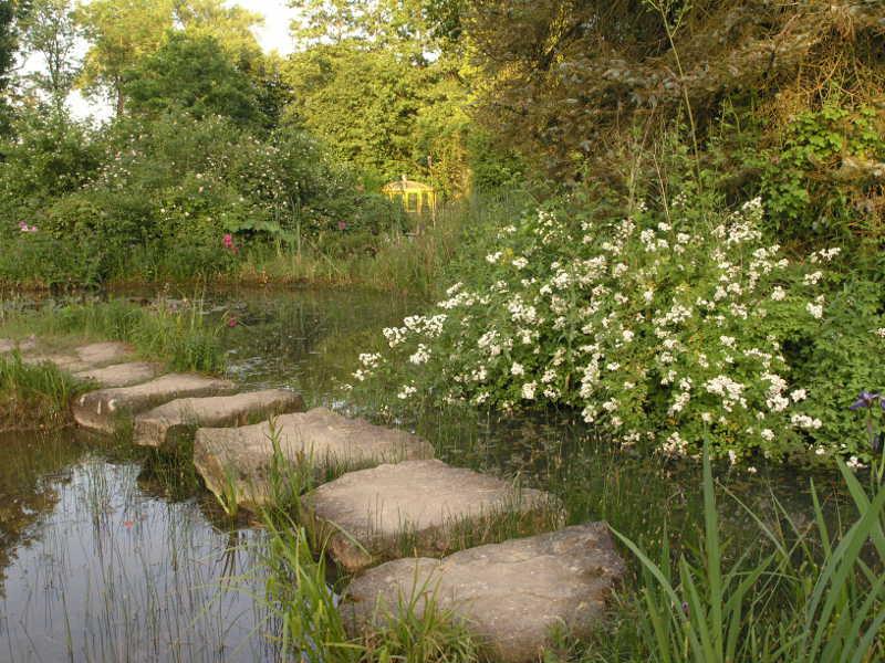 Teichbauseminar am 2 juni bei naturagart jetzt noch for Algen im naturteich