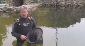 Norbert Jorek, Geschäftsführer von NaturaGart leitet die Umsiedlung der Störe aus dem Schwimmteich.