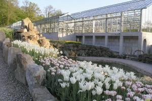 NaturaGart Palmenhaus am Unterwasserpark