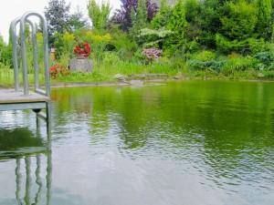 Schwimmteich mit Steg