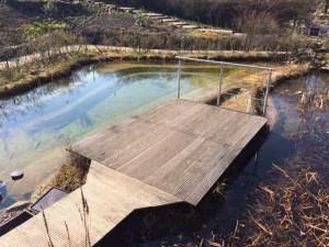 Mini-Schwimmteich mit Steg und Brücke