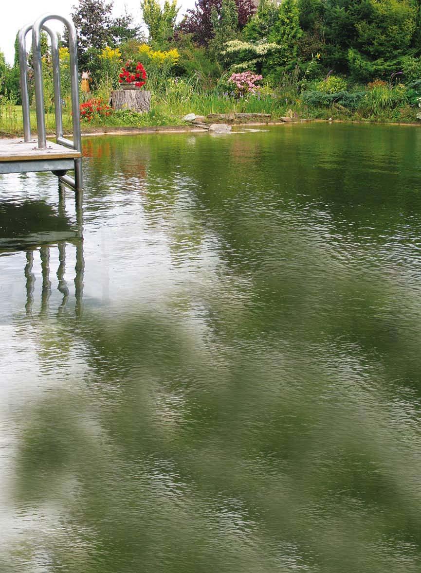 schwimmteich so wird es richtig gartenteich gartenteich planung bau und pflege naturagart. Black Bedroom Furniture Sets. Home Design Ideas