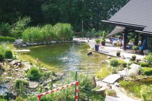 Schwimmteich mit NaturaGart gebaut