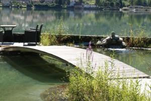 Schwimmteich Selbstbau mit NaturaGart