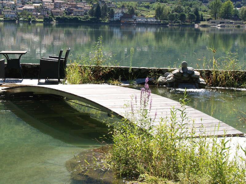 Schwimmteich selbst bauen runde form vegetation niveaus