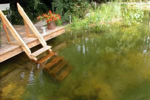 Schwimmteich zum Abkühlen
