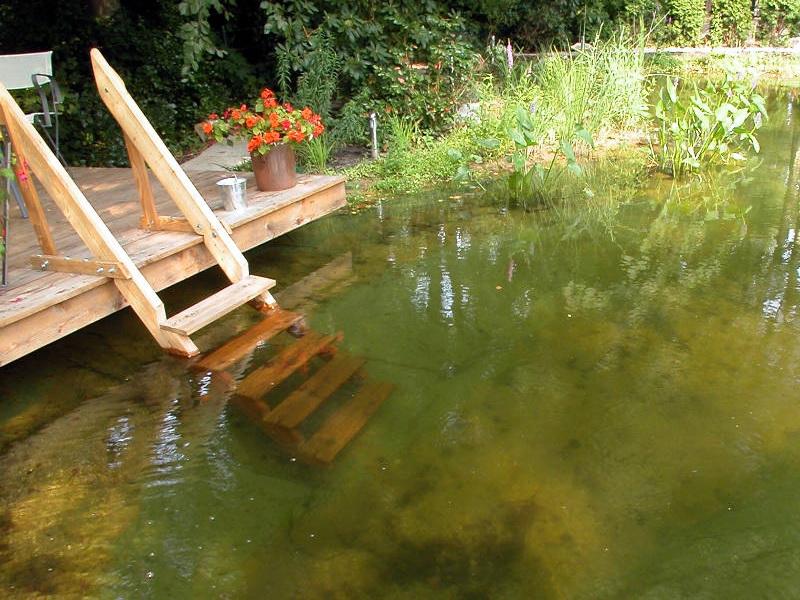 mit welchen kosten f r einen schwimmteich ist zu rechnen schwimmteich. Black Bedroom Furniture Sets. Home Design Ideas