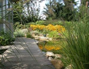 Schwimmteichbedarf weiter aufgefasst: Hier mit Steg und der Bepflanzung am Teich und im Garten.