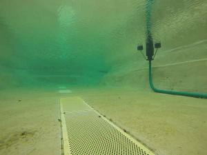 ...aus Schwimmteichen werden sie entfernt und das Wasser kann kristallklar sein.