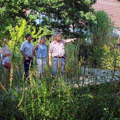 Die Vermörtelung des Teiches ist eine viel nachgefragte Teichbau-Technik.