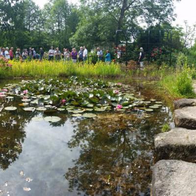 Die vielen Teiche im Park dienen als Anschauungsbeispiel