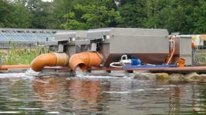 Ein Filtergraben nimmt das gereinigte Wasser auf. Er regelt die Entnahme der wassergelösten Nährstoffe.