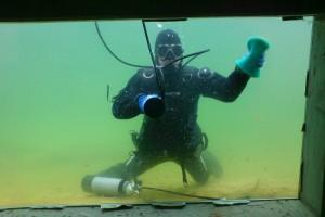 Teichfenster putzen für den neuen Beluga Stör im NaturaGart Park