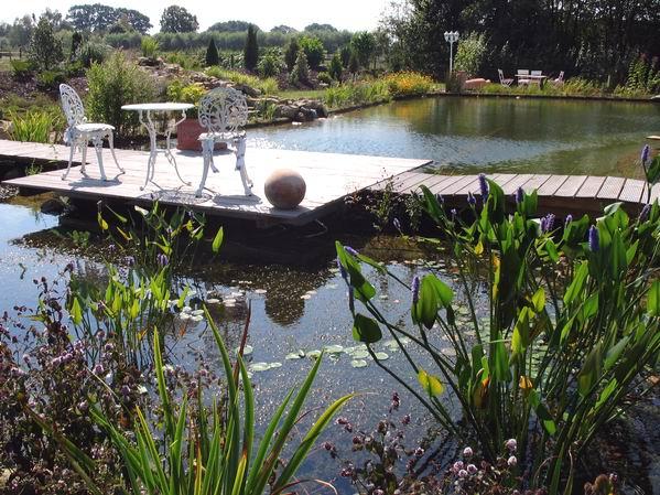Gartenteich schwimmteich oder fischteich abdichtungs for Fischteich schutz