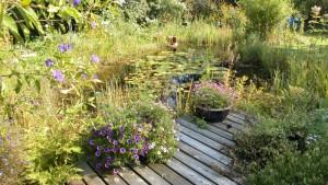 Gartenteich planung bau und pflege page 5 mit for Teichideen gartenteich
