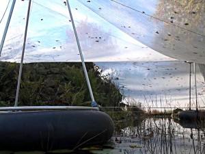 Schwimmstütze für das Teichnetz