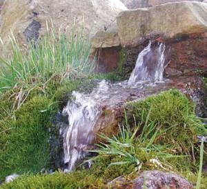 Teichpumpe von Naturagart an einer Quelle