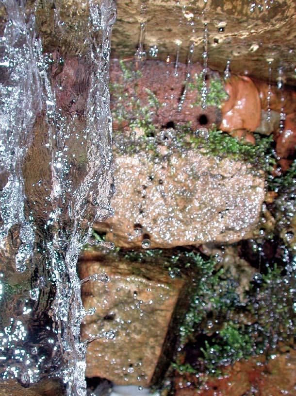 Teichpumpe von NaturaGart bringt Bewegung ins Wasser