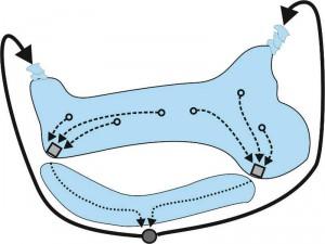 Schematische Darstellung der Wasserbewegung in einem unregelmäßig geformten Teich. Die Zielsaugtechnik ist durch die Rechtecke dargestellt. Hier laufen je drei Ansaugpunkte zusammen.