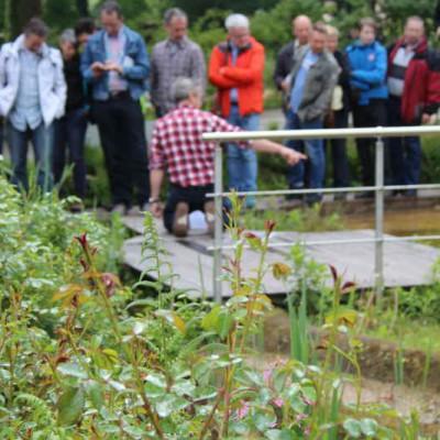 Erläuterung von Teichbau-Techniken an den Teichen im Park.