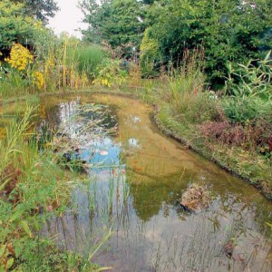 NaturaGart Ufermatte