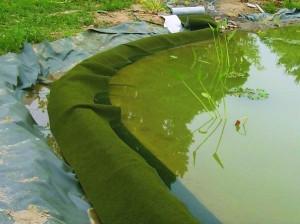Die Ufermatte wird am einfachsten am Ufer abgerollt