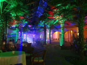 Die Palmenhalle kann für Events unterschiedlicher Art genutzt werden. Auch als Partyraum.