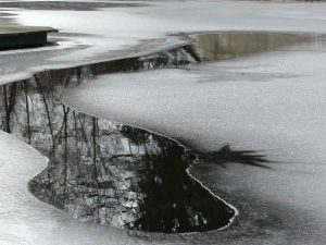 Auch im Winter brauchen Fische Luft zum Atmen. Durch freie Stellen gelangt Sauerstoff in den Teich und Kohlendioxid kann entweichen.